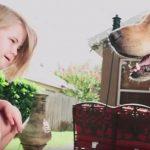 Najlepszy przyjaciel dziewczyny [VIDEO]